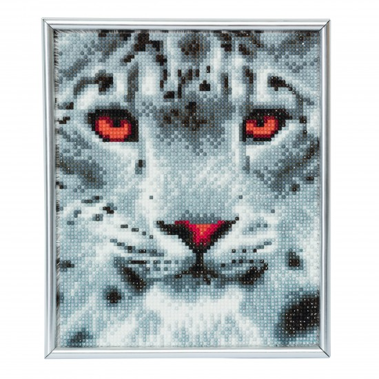 Set creativ Crystal Art in rama foto argintie Snow Leopard 21x25cm, Craft Buddy Art & Craft