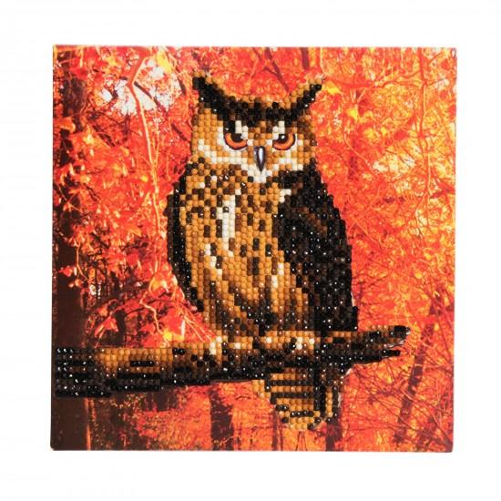 Set creativ tablou cu cristale Autumn Owl 18x18cm, Craft Buddy Art & Craft