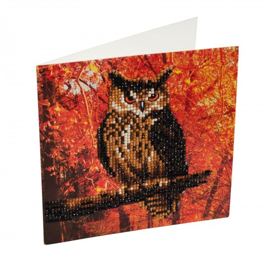 Set creativ tablou cu cristale Autumn Owl 18x18cm, Craft Buddy