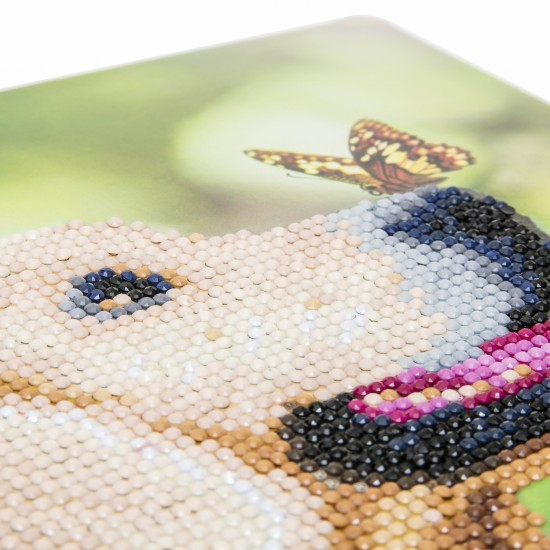 Set creativ de colectie Crystal Art Gallery Dog and Butterfly cu sevalet 21x25cm, Craft Buddy